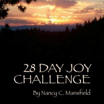 28 Day Joy Challenge Workbook
